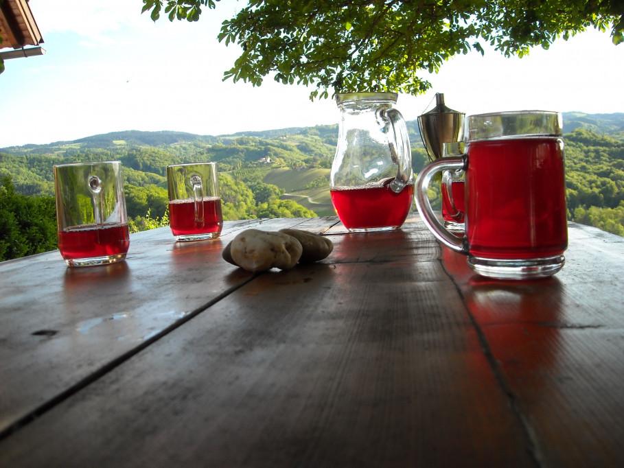 Framboiseraie Renner : des framboises, du vin, du potiron et bien plus encore