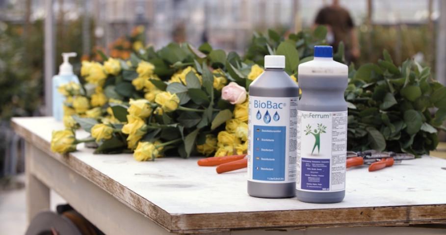 Vitalisierung durch GRANDER® fördert die Stabilität des Flüssigdüngers