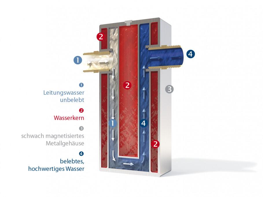 1) compartiments remplis avec de l'eau informée    2) eau du réseau non vivifiée    3) eau du réseau vivifiée