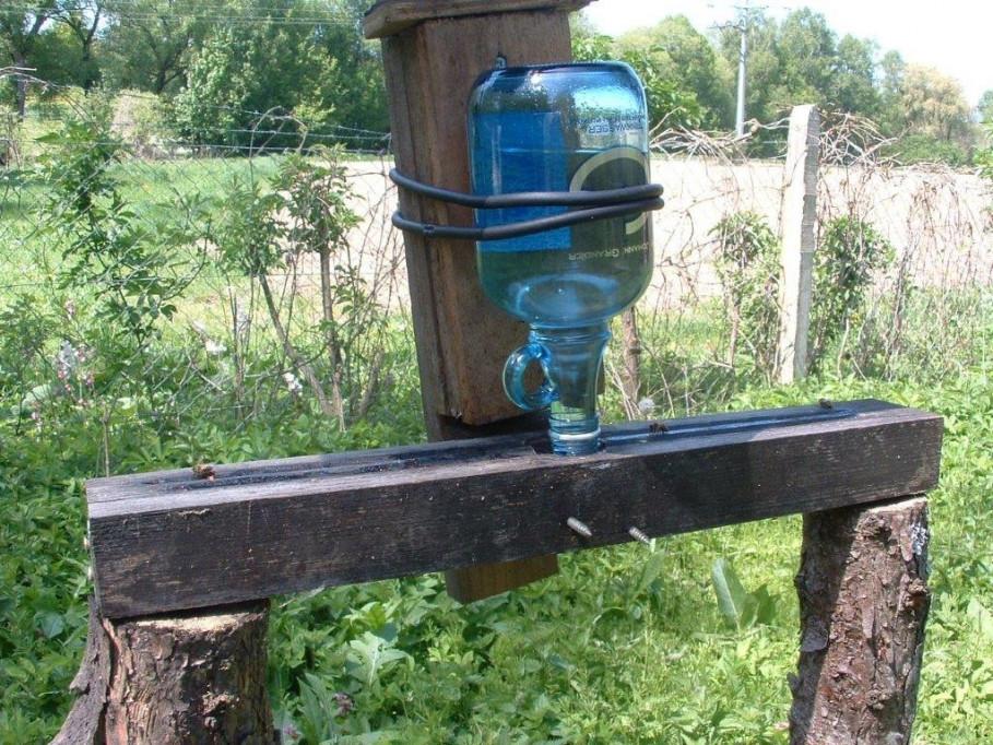 Bienen folgen ihrem Instinkt und fliegen auf GRANDER®-Wasser