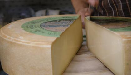 Cream of the Crop: Naturkäserei TegernseerLand Organic Cheesery