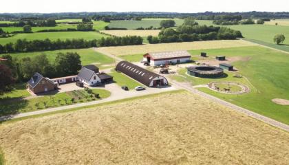 Famille Hansen, dans le secteur des chevaux de course, Faxe, Danemark