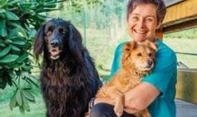 Belebtes Hundeschwimmbad in Rheinmünster/DE